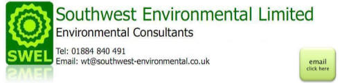 the environment - consultants